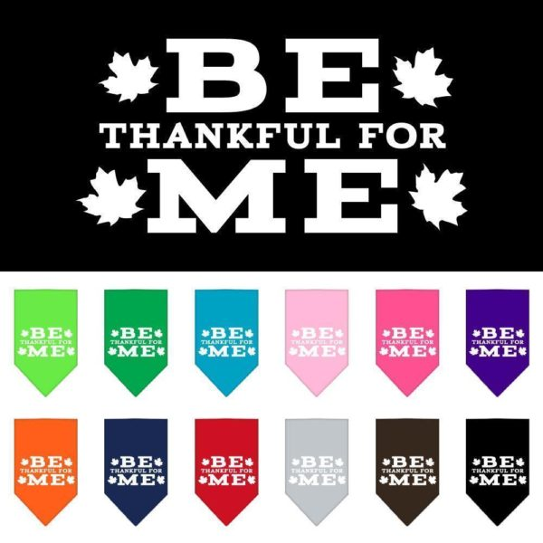 be-thankful-for-me-asst