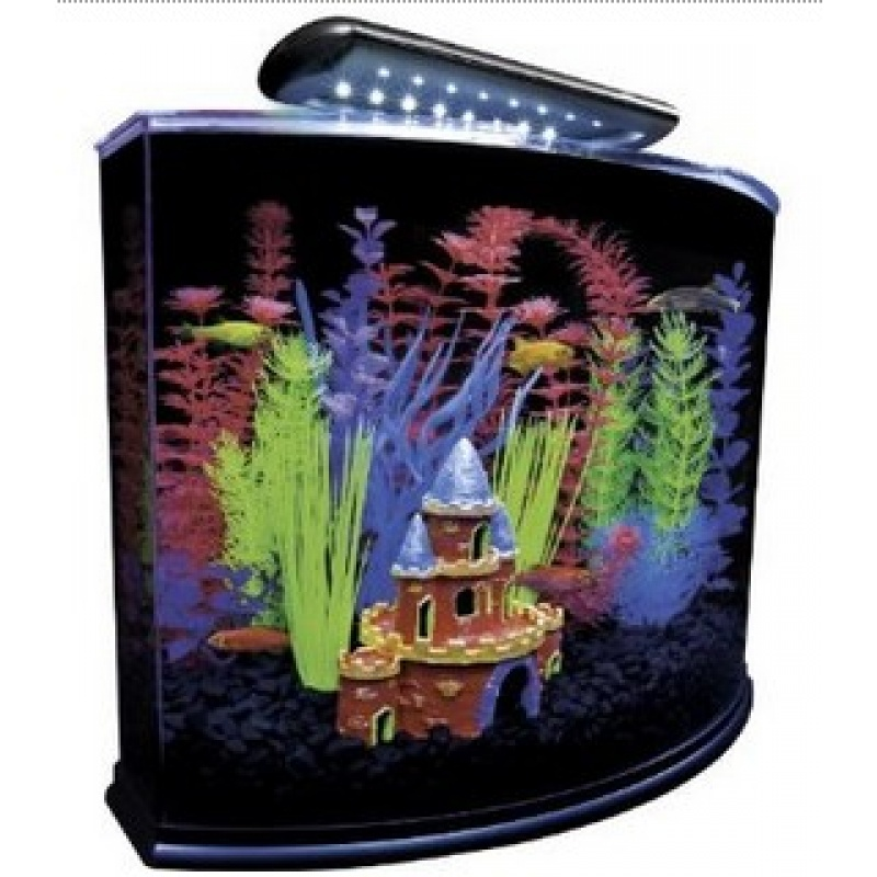 Glo fish aquarium kit with led light happy tails pet store for 99 5 the fish