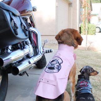 biker-dawg-motorcycle-dog-jacket-black-3