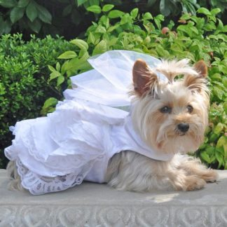 dog-wedding-harness-dress-set-